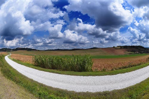 On Monferrato gravel roads with Monferrato Bike Tours