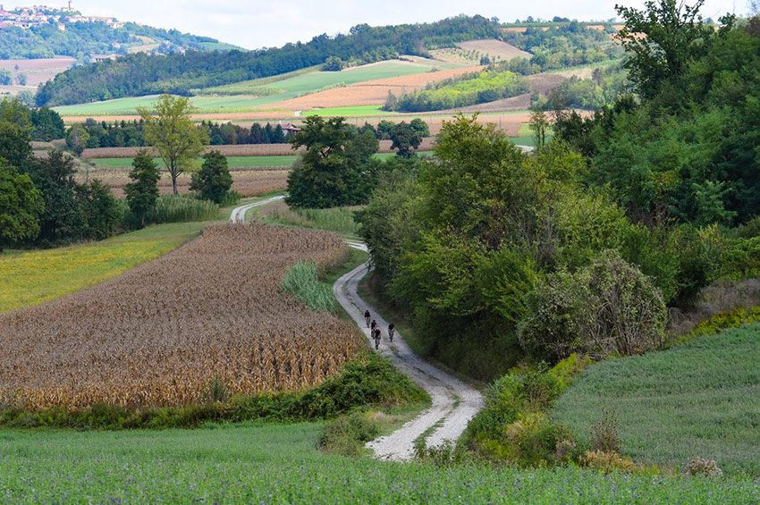 Monferrato Bike Tours, official partner della Monsterrato